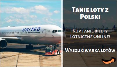 Wyszukiwarka tanich lotów z Polski